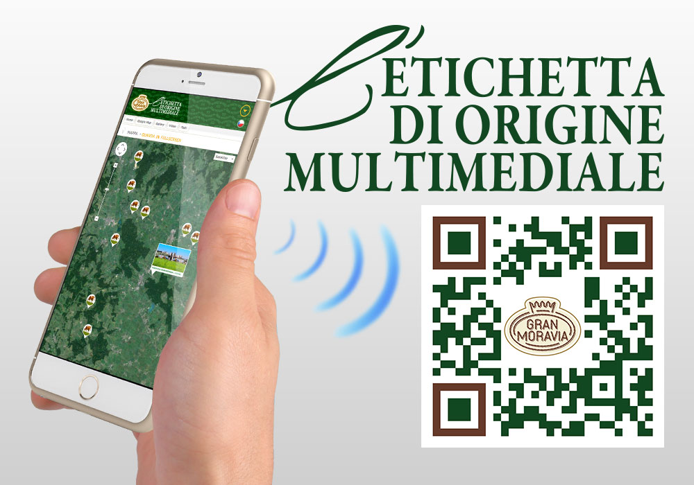 homepage-news-etichetta_multimediale