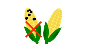 no aflatossine / no aflatoxins