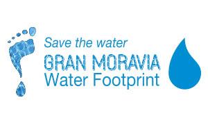blue water - water footprint