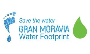 green water - water footprint