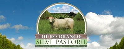Brazzale SpA in Brasile